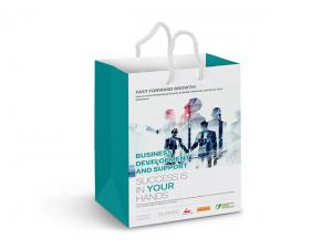 Laminated Colour Printed Paper Bags (Med)