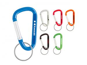 Carabiner Key Chains (60mm)
