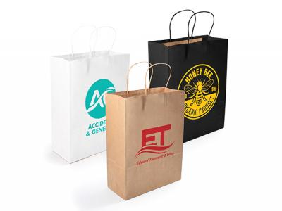 Eco Kraft Paper Bags (Medium)